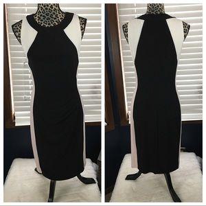 Ralph Lauren Blush/Black Color Block Dress size 6